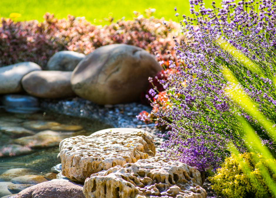 5 Awesome Landscape Design Trends in 2021